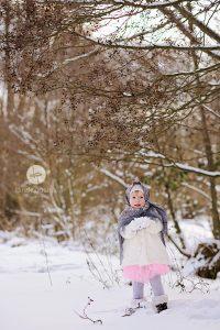 im schneewald
