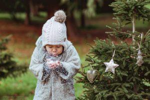 frohe weihnachten 2017